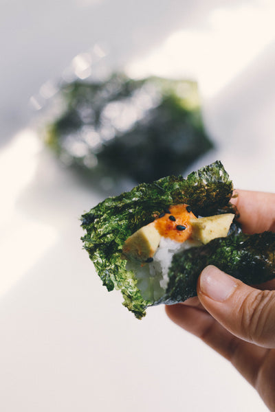 Healthy Seaweed Wrap