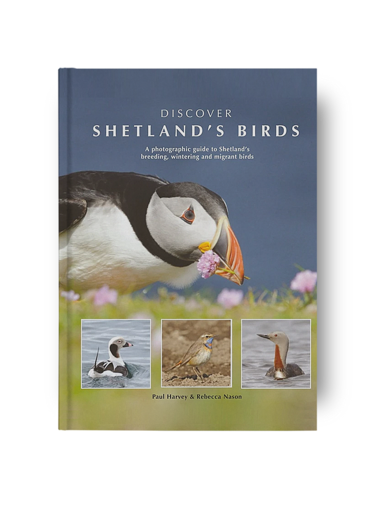 Discover Shetland's Birds - Paul Harvey and Rebecca Nason