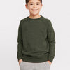 Next Terry Fleece Crew Neck Raglan Sleeve Sweatshirt For Kids-Green With Panels-SP817