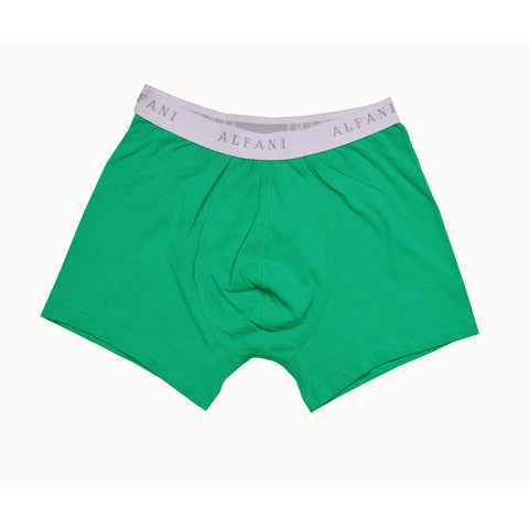 Alfani Boxer Short for Men-Jade-BE842