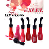 EXCEL PARIS Long Lasting Lip Gloss-NA7035