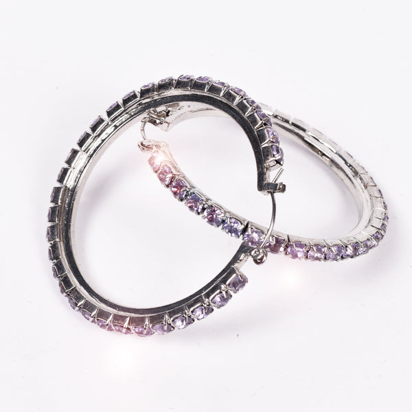 Stylish Circle Style Earring For Women-Purple Stones-NA5090