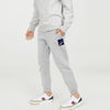 Reebok Terry Fleece Jogger Trouser For Kids-Grey Melange-BE7897