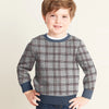 Tommy Hilfiger Fleece Crew Neck Sweatshirt For Kids-Grey With Dark Lining-SP1373