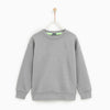 Tommy Hilfiger Crew Neck Fleece Sweatshirt For Kids-Light Grey-NA7732