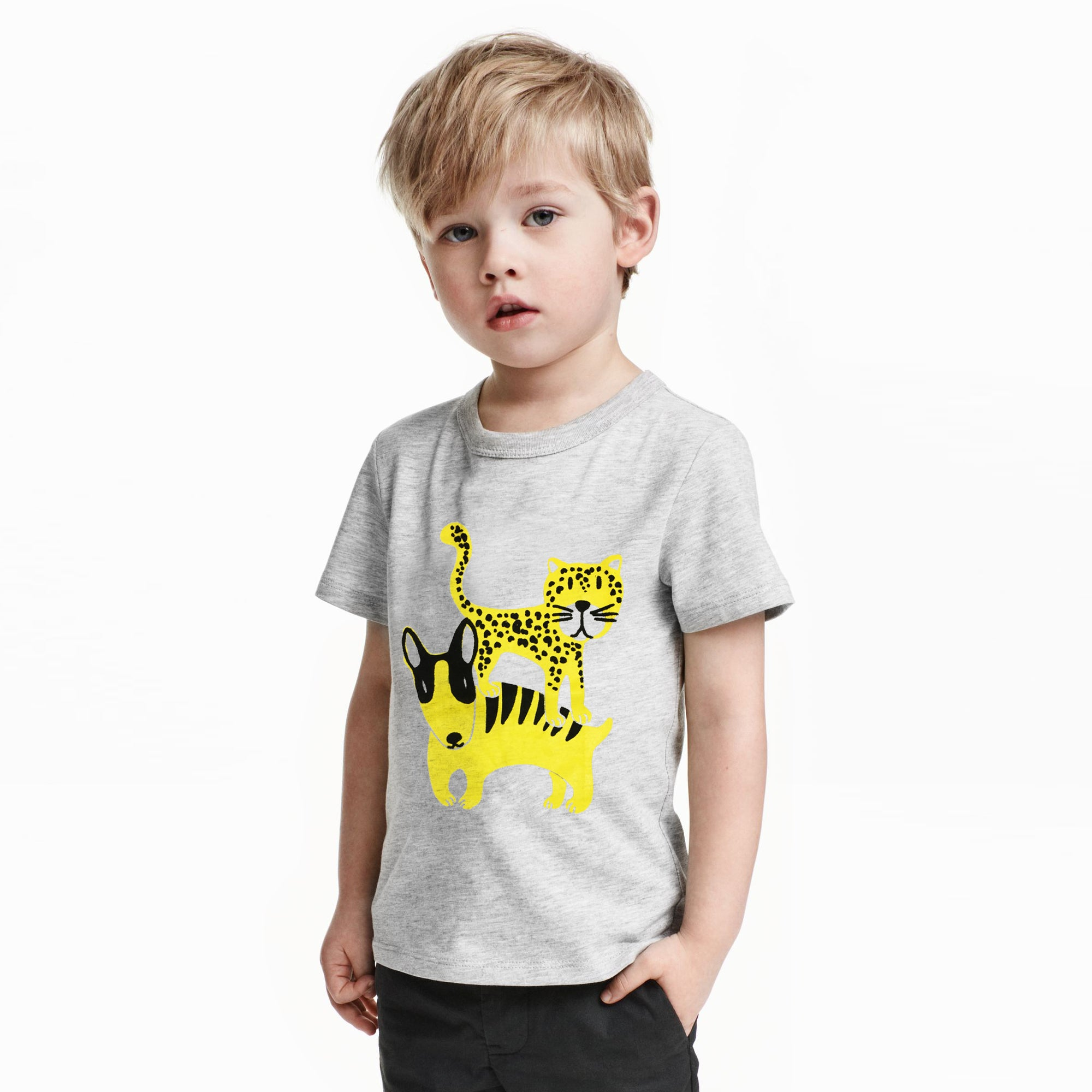 ZBaby Crew Neck Half Sleeve Tee Shirt-Grey-NA11033