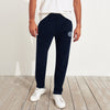 A&F Fleece Straight Fit Jogger Trouser For Men-Dark Navy-B6903