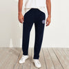 A&F Fleece Straight Fit Jogger Trouser For Men-Dark Navy-BE6594