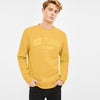 New York Popular Crew Neck Fleece Embroidered Sweatshirt For Men-Yellow-BE10416
