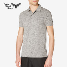 Cedarwood State Polo Shirt For Men-Gray Melange-BE2481