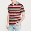 The Modern Short Sleeve P.Q Polo Shirt For Men-Striped-BE8608