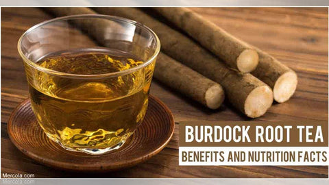Burdock Root Tea Benefits, Image taken from Yandex.com