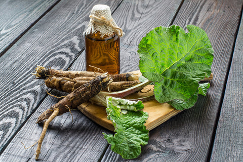Burdock Root Oil, Image taken using Yandex.com