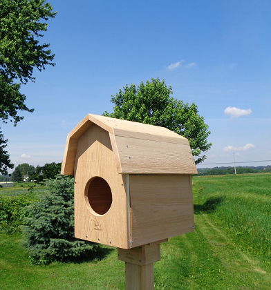 Barn Owl Nest Box-cedar-barn-owl-nestbox-usa