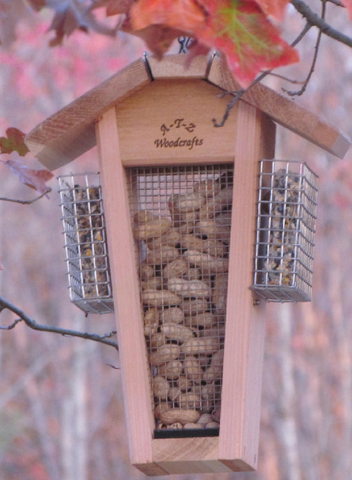 Woodpecker Peanut Feeder with Stainless Suets