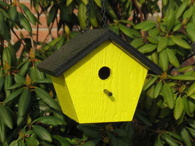 Shapz Birdhouse - Polygon