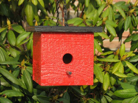 Shapz Birdhouse - Square-Birdhouse