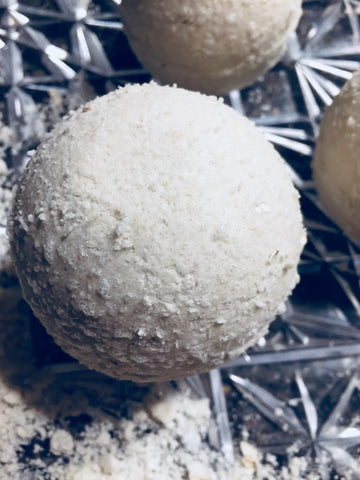 Bath Bombs- Oatmeal (unscented)
