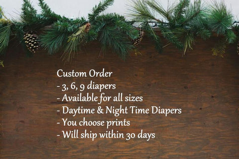 HYBRID- Custom Order- (3, 6, 9 cloth diapers) Visionary