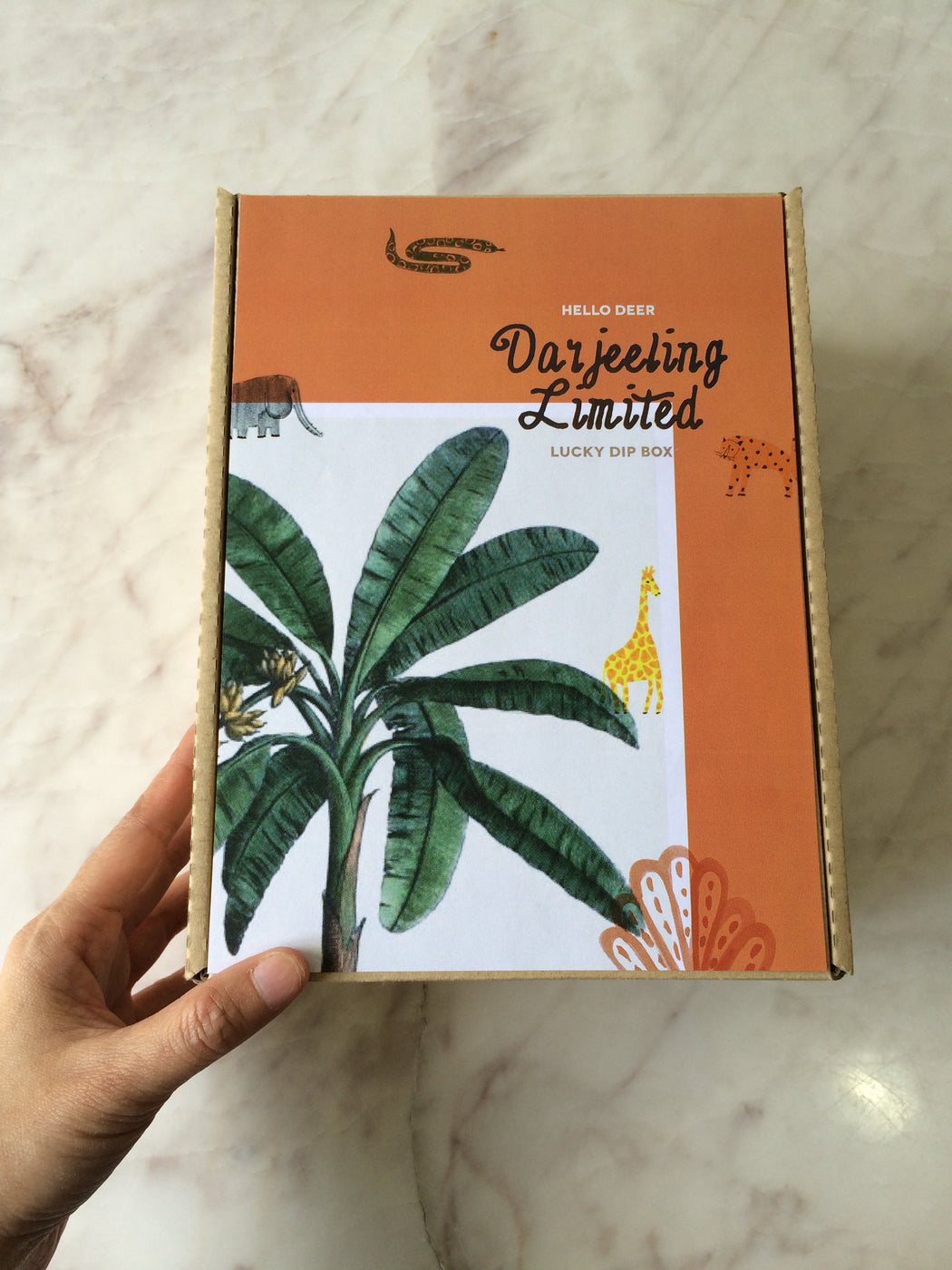 Lucky Dip No.2 : Darjeeling Limited Box