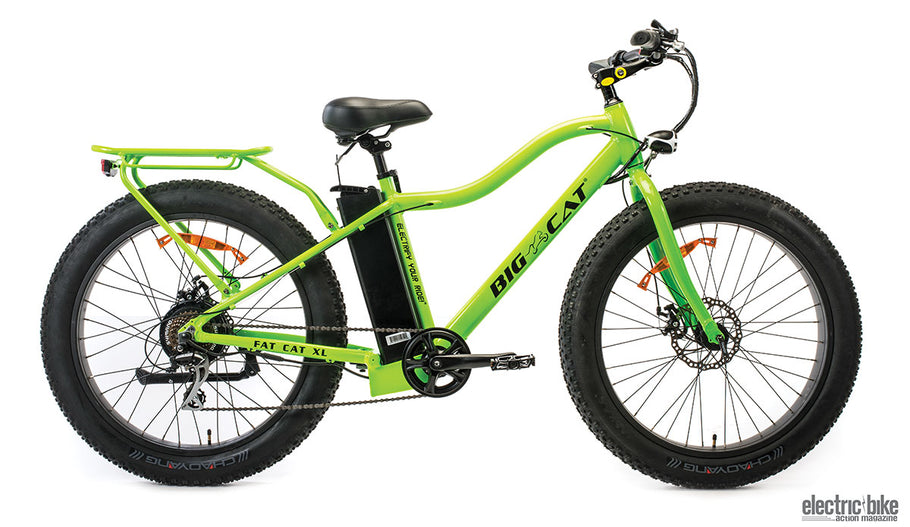 Big Cat Electric Bike Customer Review