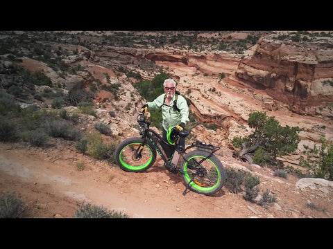 big cat fat cat electric fat bike ebike