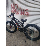 Big Cat-2021 Rocky XL 500w Fat Tire! Top Seller! (Dual Suspension)