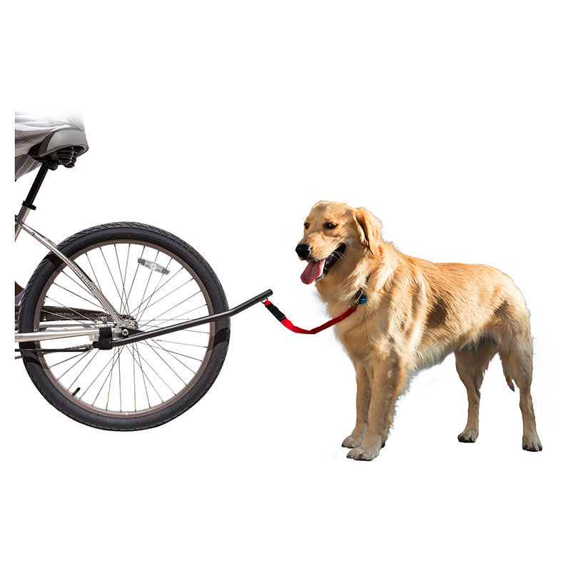 Sunlite | Bicycle Dog Leash - - Accessories Big Cat Electric Bikes