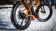 BIG CAT® 2021 Fat Cat XXL 750- Fat Tire! (top Seller) #Badass