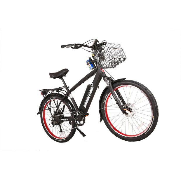 Big Cat Laguna Beach Cruiser- 48V 500W