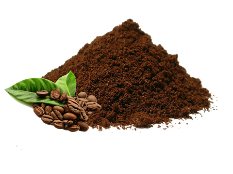 Coffee Powder - 100 g