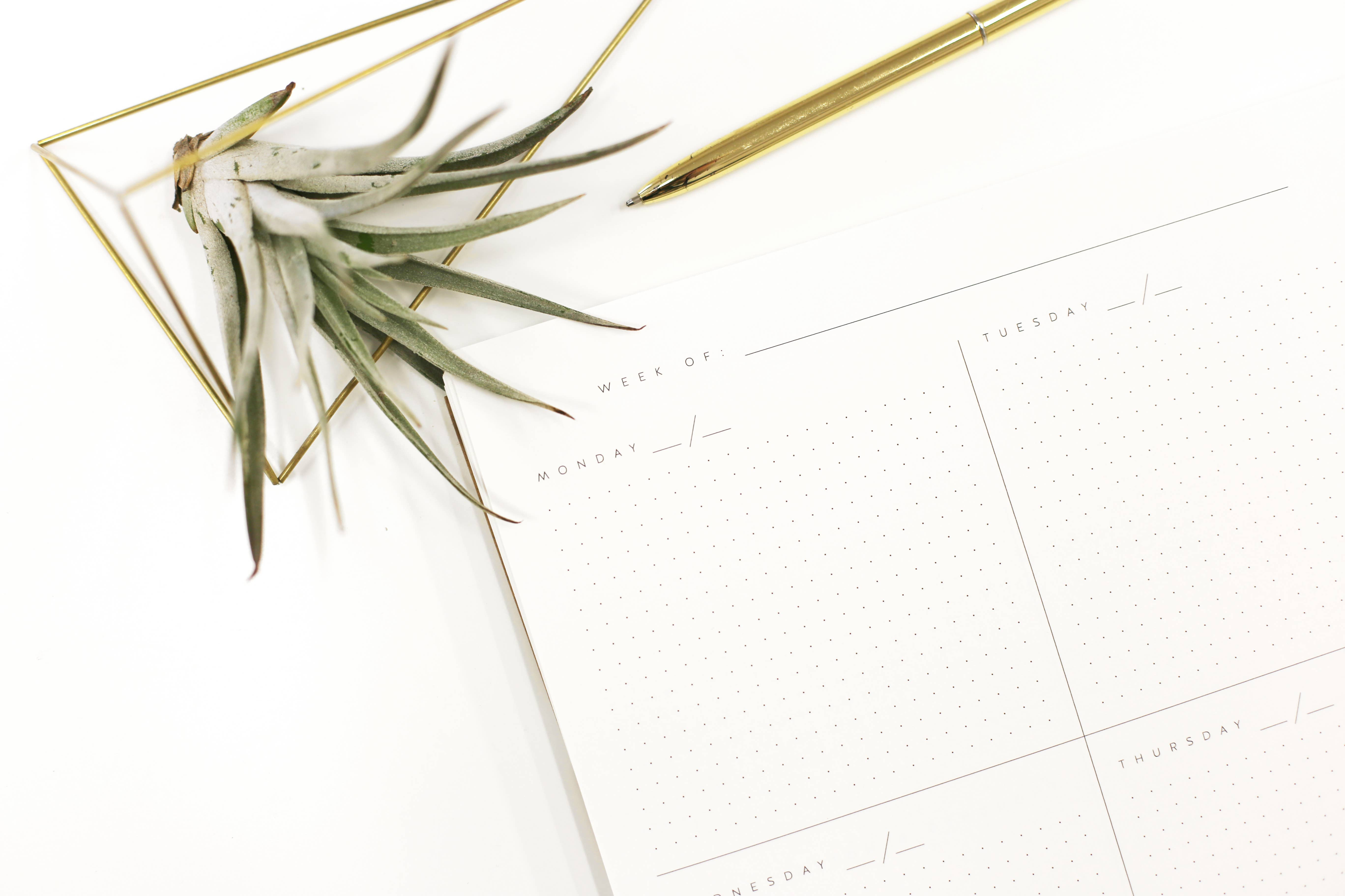 Worthwhile Paper Planner Open-Dated Calendar, Worthwhile Paper, Handcrafted Home Goods and Gifts