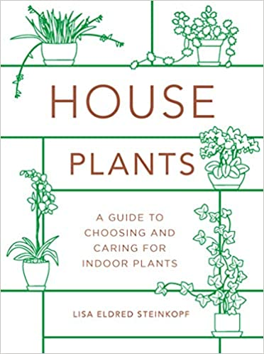 Houseplants: Mini Guide To Choosing, Growing, And Caring For Indoor Plants