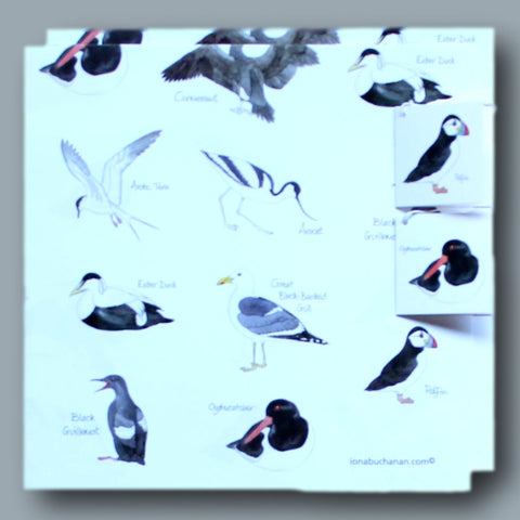 Wrapping paper with sea bird design