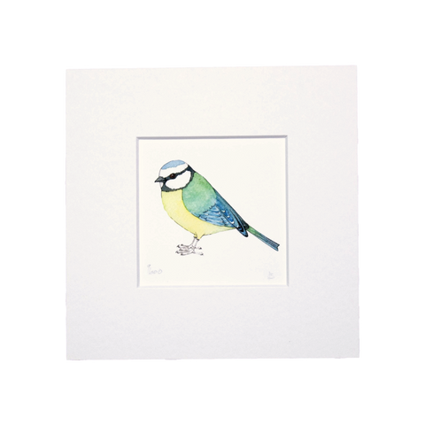 Blue Tit Mini Print
