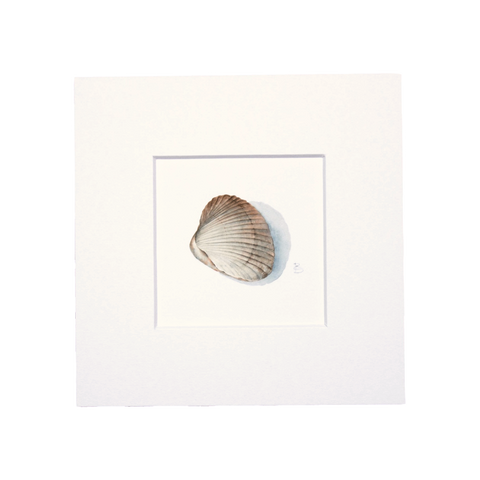 Cockle Mini Print