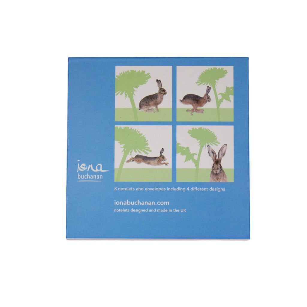hare notelets - the back of a boxed set of 8 notelets featuring a hare