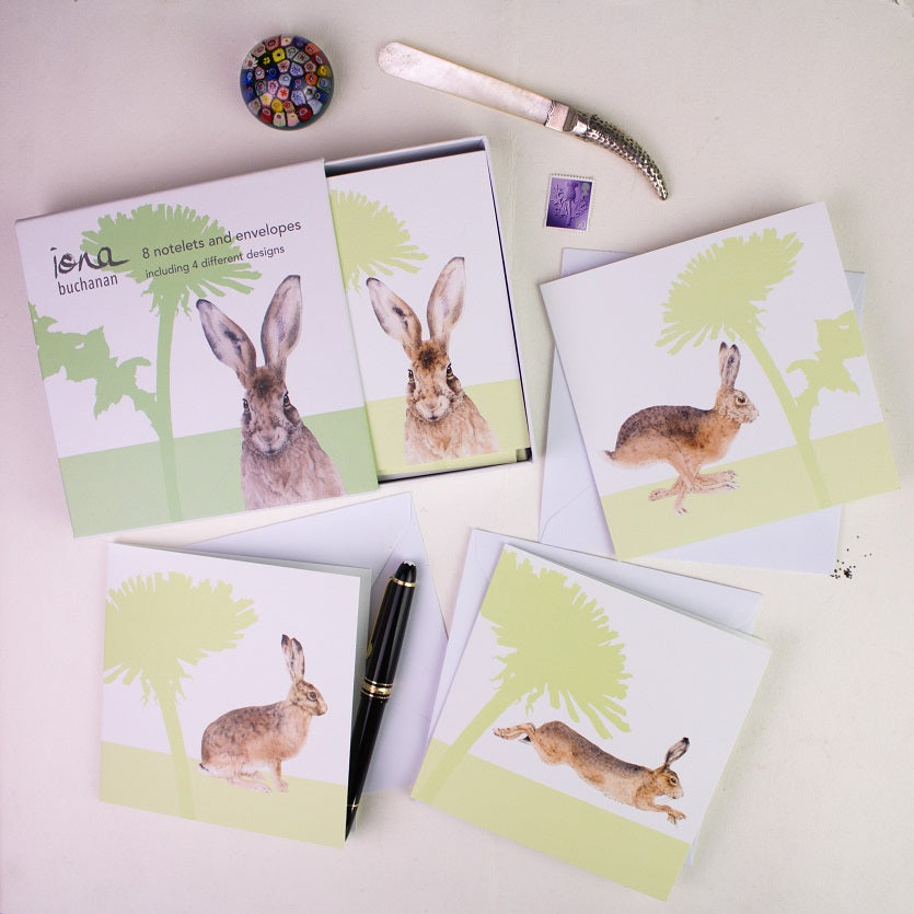 hare notelets - a boxed set of 8 notelets featuring a hare