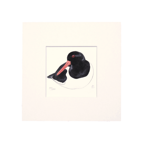Oystercatcher Mini Print