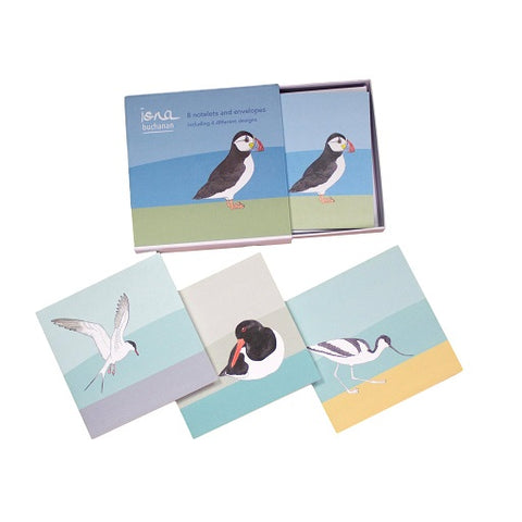 bird notelets - a boxed set of 8 notelets featuring sea birds