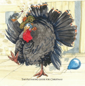 Charity Christmas Card Packs - Turkey