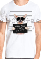 Very bad dog