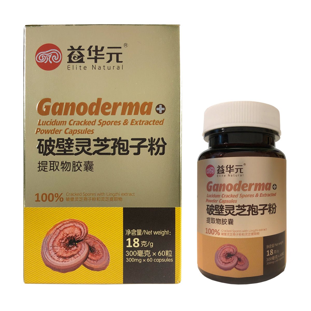 Ganoderma Lucidum crached spores capsule