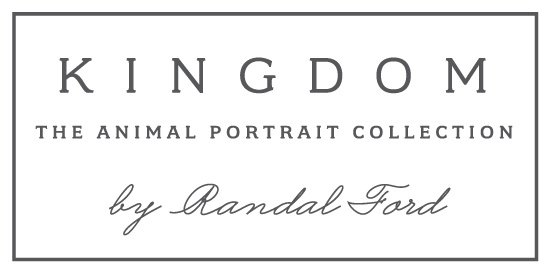 Kingdom by Randal Ford