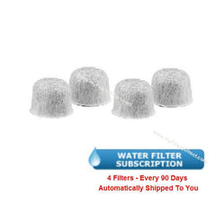 SUBSCRIPTION (Automatic Reshipment Every 90 Days) - GE Water Filter (4 Pack)  -  169218-4S