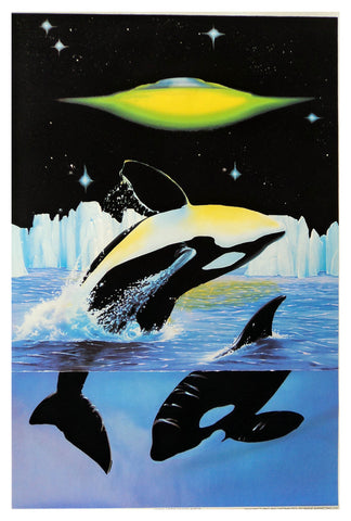 Felt Black Light Poster - 1997 - Arctic Encounter