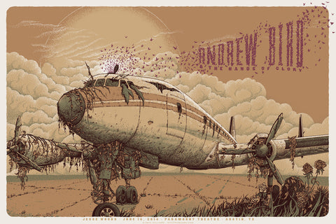 Neal Williams - 2014 Andrew Bird - Austin Poster