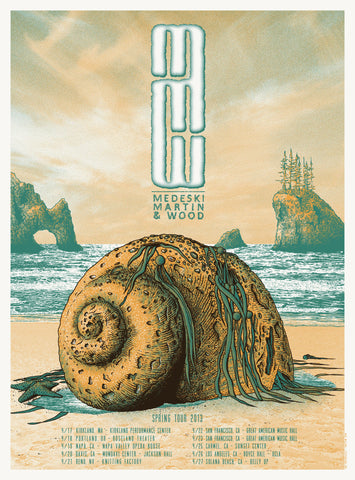 Neal Williams - 2013 Medeski, Martin & Wood - Spring Tour Concert Poster