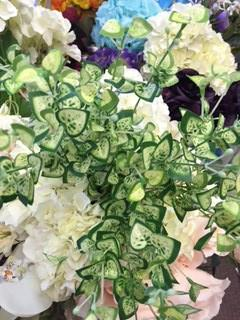 Begonia leaf bunch for Wedding home decor - Richview Glass Wedding Supplies
