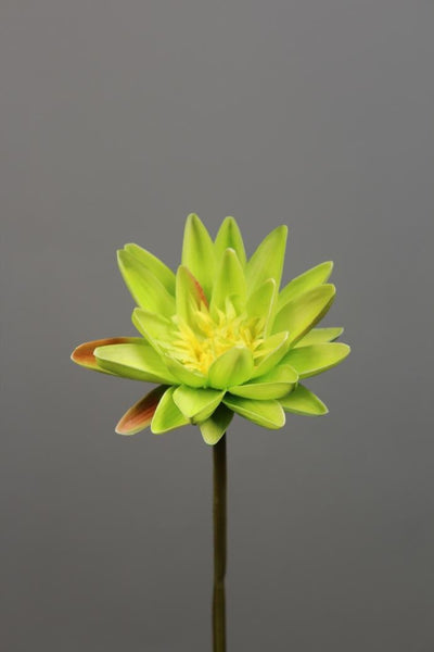 Artificial Flower Water Lily real touch floramatique SB005 (Yellow) -REA1-7 - Viva La Rosa